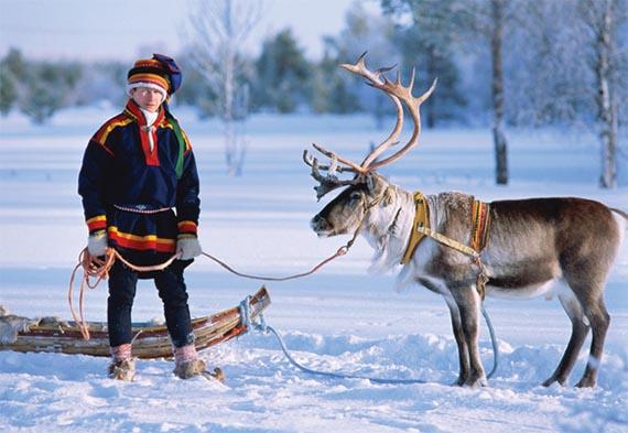 финляндские олени